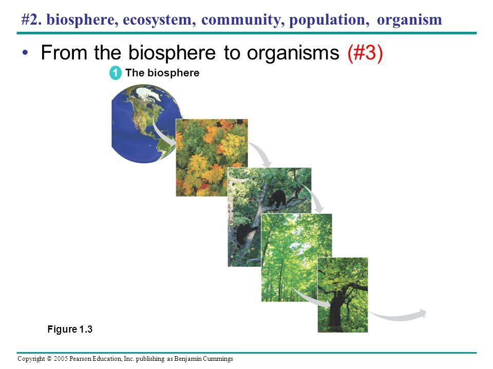 #2. biosphere, ecosystem, community, population, organism