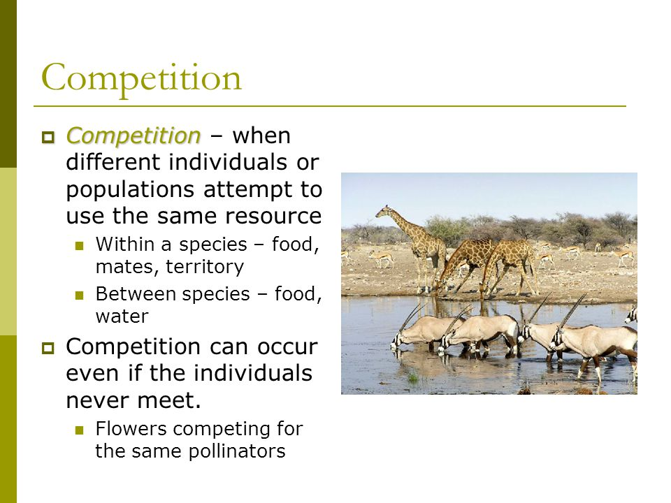 Competition Competition – when different individuals or populations attempt to use the same resource.
