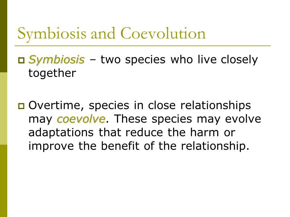 Symbiosis and Coevolution