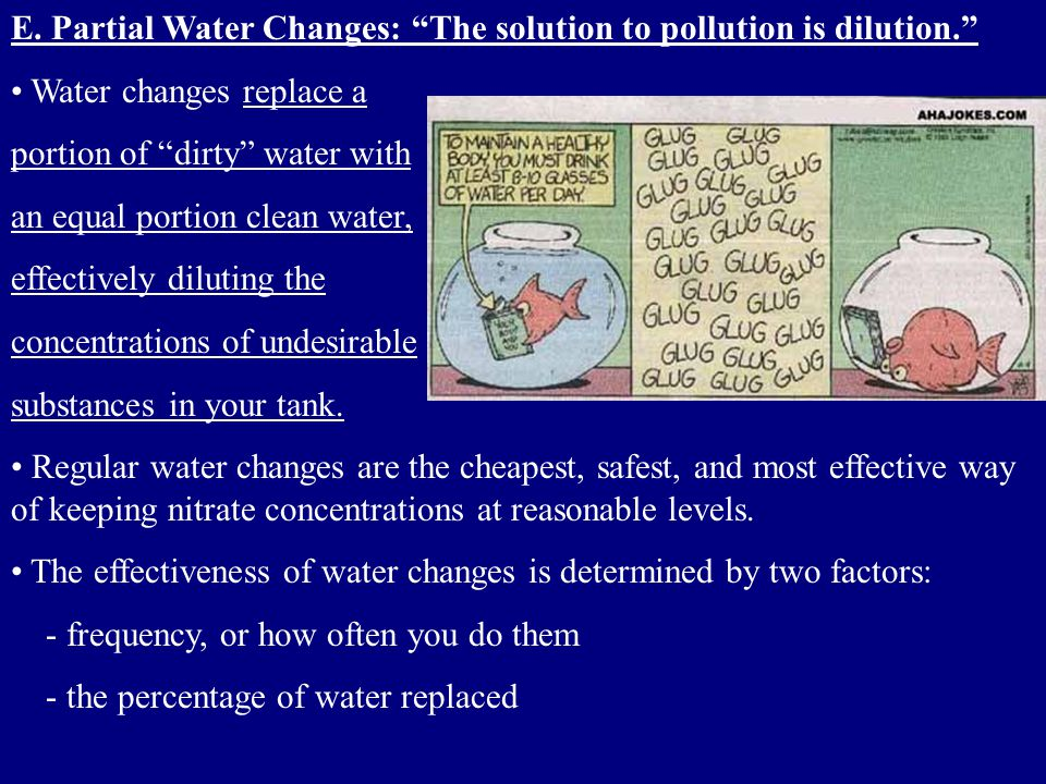 E. Partial Water Changes: The solution to pollution is dilution.