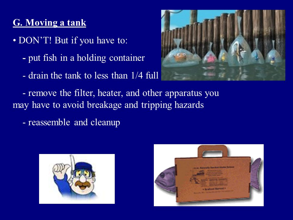 G. Moving a tank DON'T! But if you have to: - put fish in a holding container. - drain the tank to less than 1/4 full.