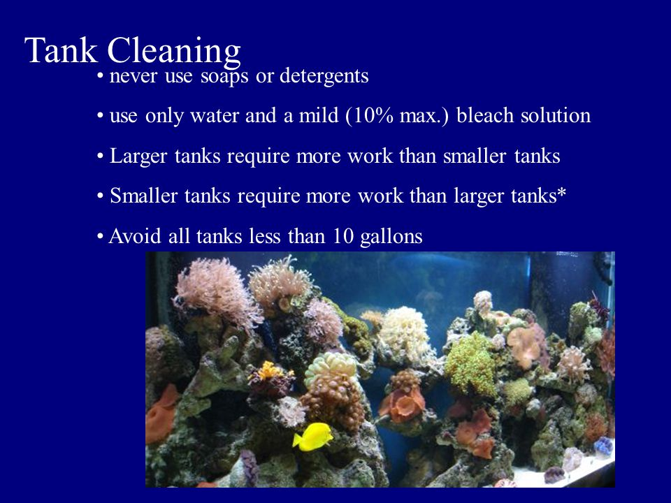 Tank Cleaning never use soaps or detergents