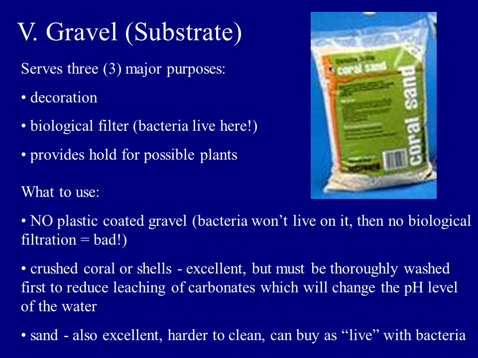 V. Gravel (Substrate) Serves three (3) major purposes: decoration