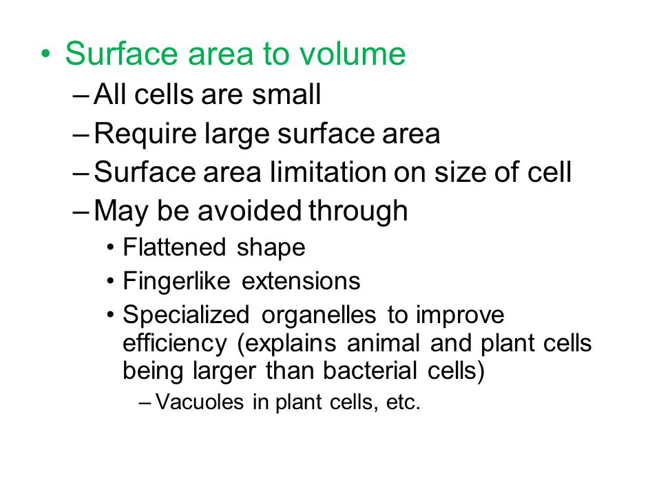 Surface area to volume All cells are small Require large surface area