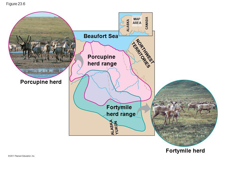 Beaufort Sea Porcupine herd range Porcupine herd Fortymile herd range