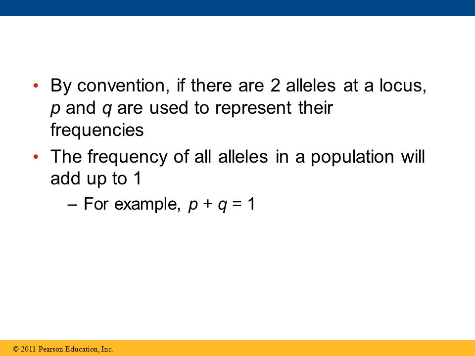 The frequency of all alleles in a population will add up to 1