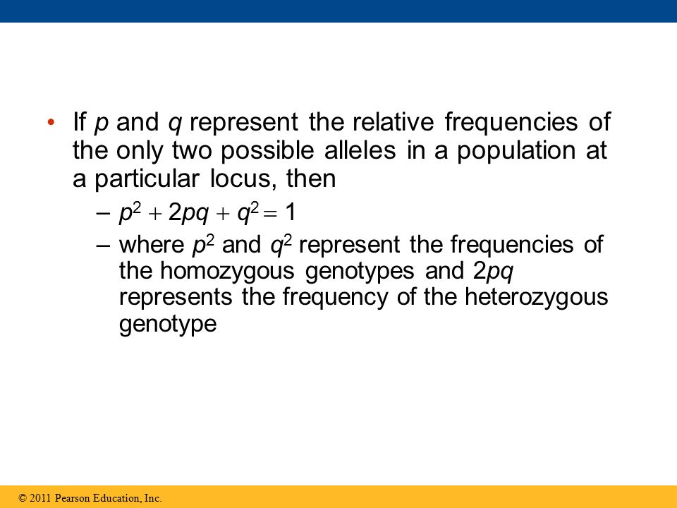 If p and q represent the relative frequencies of the only two possible alleles in a population at a particular locus, then