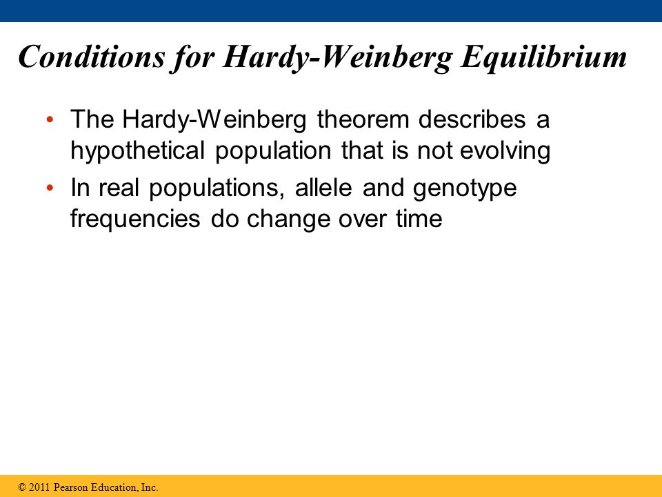 Conditions for Hardy-Weinberg Equilibrium