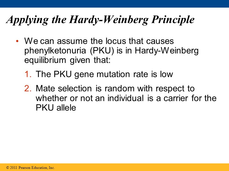 Applying the Hardy-Weinberg Principle