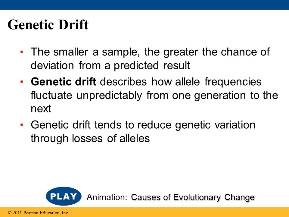 Genetic Drift The smaller a sample, the greater the chance of deviation from a predicted result.