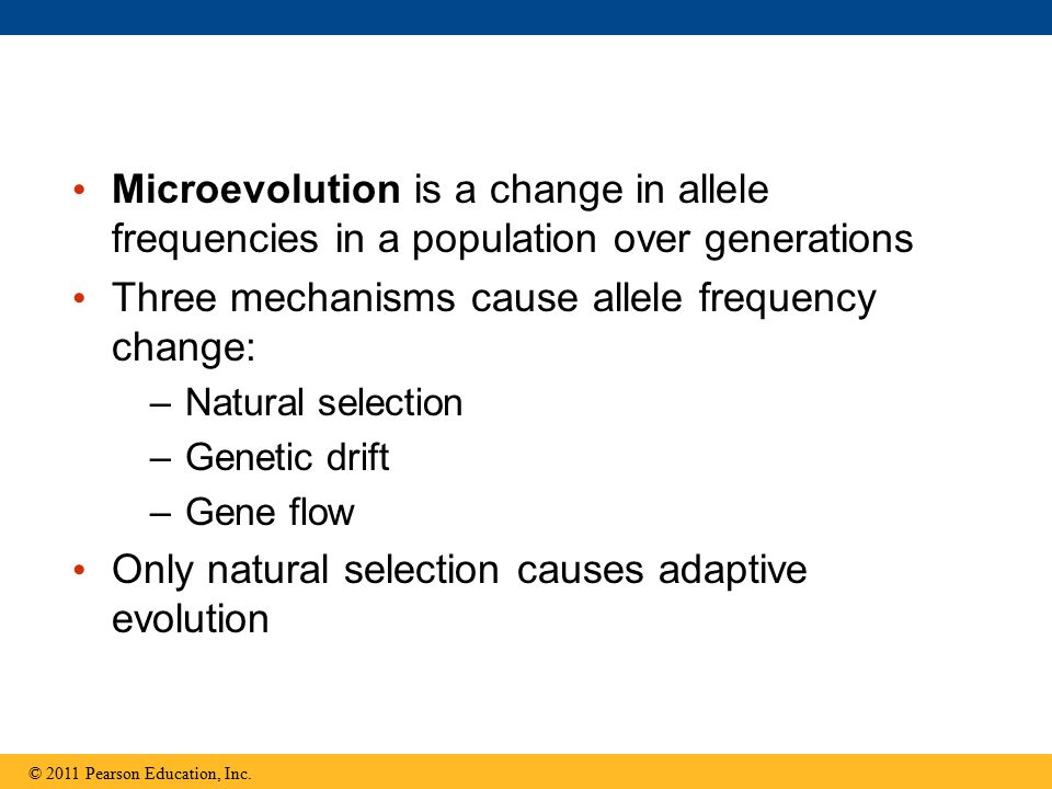 Three mechanisms cause allele frequency change: