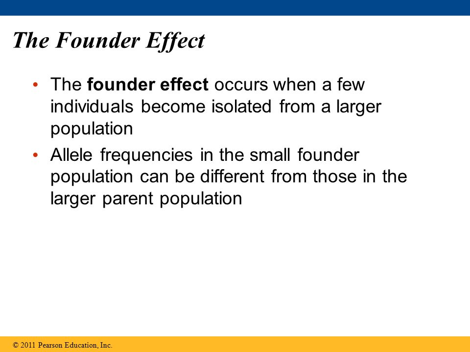 The Founder Effect The founder effect occurs when a few individuals become isolated from a larger population.