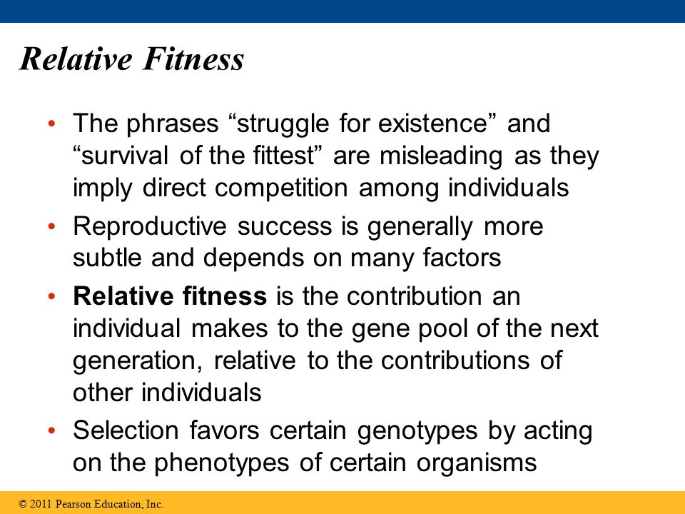 Relative Fitness The phrases struggle for existence and survival of the fittest are misleading as they imply direct competition among individuals.