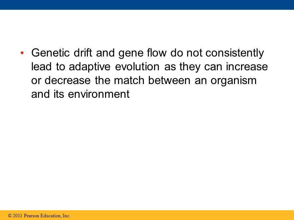 Genetic drift and gene flow do not consistently lead to adaptive evolution as they can increase or decrease the match between an organism and its environment