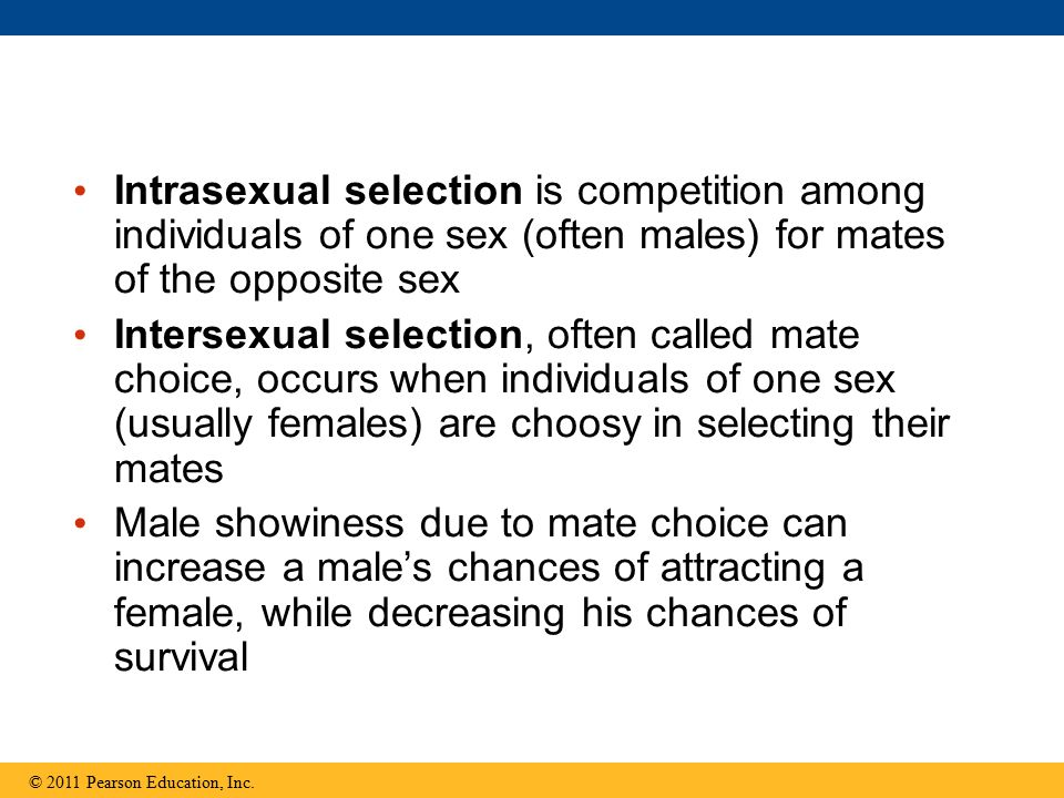 Intrasexual selection is competition among individuals of one sex (often males) for mates of the opposite sex