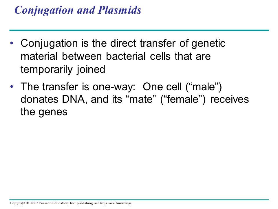 Conjugation and Plasmids