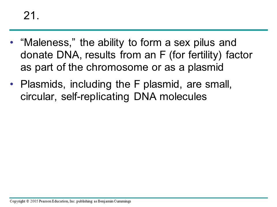 21. Maleness, the ability to form a sex pilus and donate DNA, results from an F (for fertility) factor as part of the chromosome or as a plasmid.