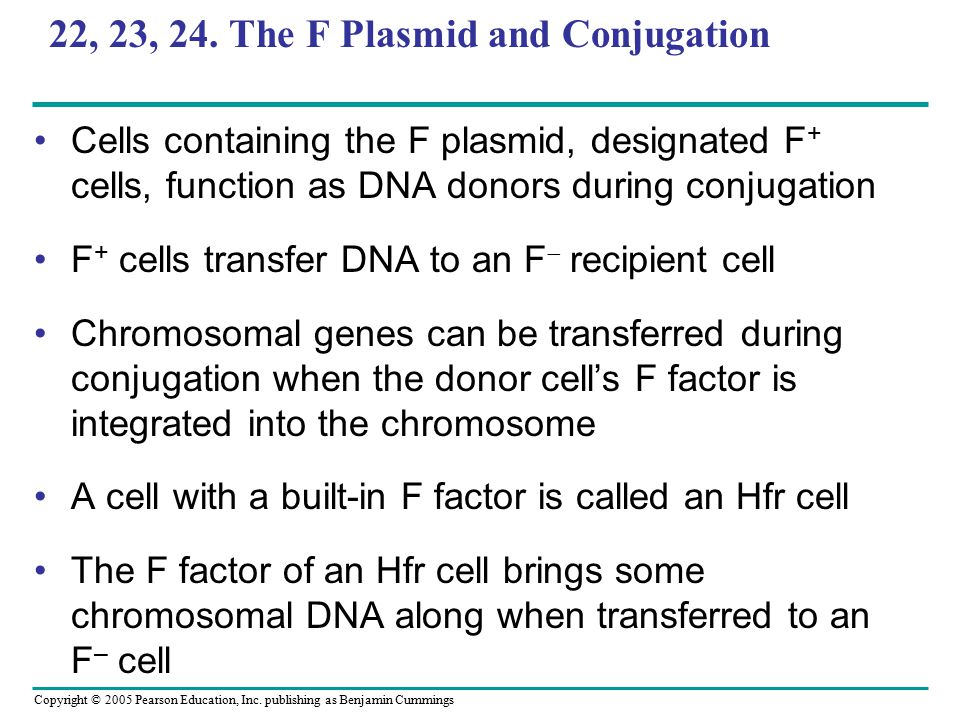 22, 23, 24. The F Plasmid and Conjugation