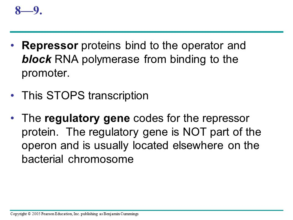 8—9. Repressor proteins bind to the operator and block RNA polymerase from binding to the promoter.