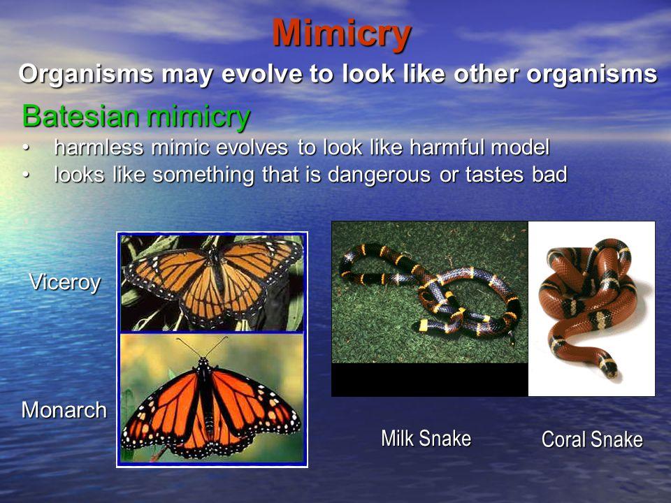 Mimicry Batesian mimicry