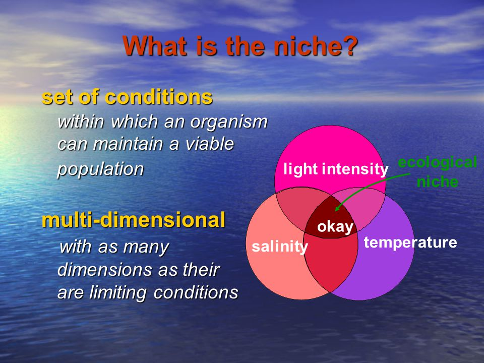 What is the niche set of conditions multi-dimensional with as many