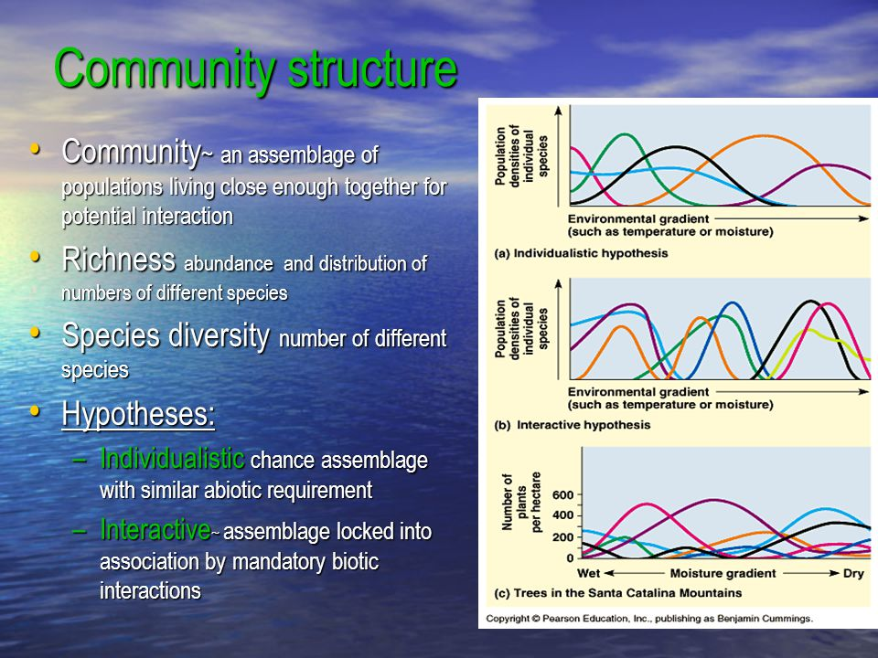 Community structure Community~ an assemblage of populations living close enough together for potential interaction.