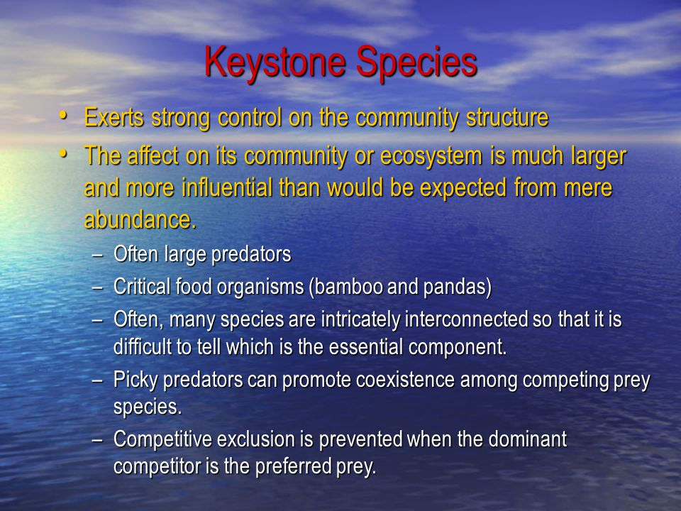 Keystone Species Exerts strong control on the community structure