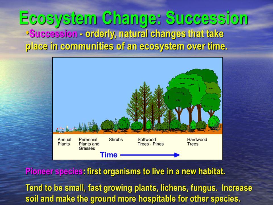 Ecosystem Change: Succession