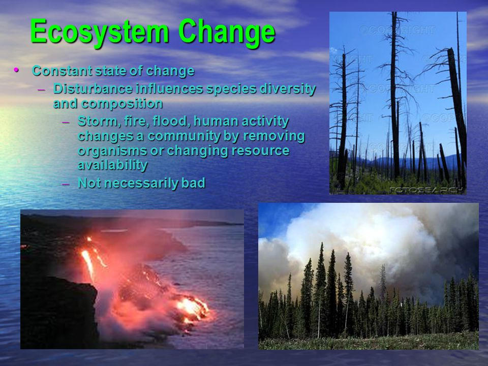 Ecosystem Change Constant state of change