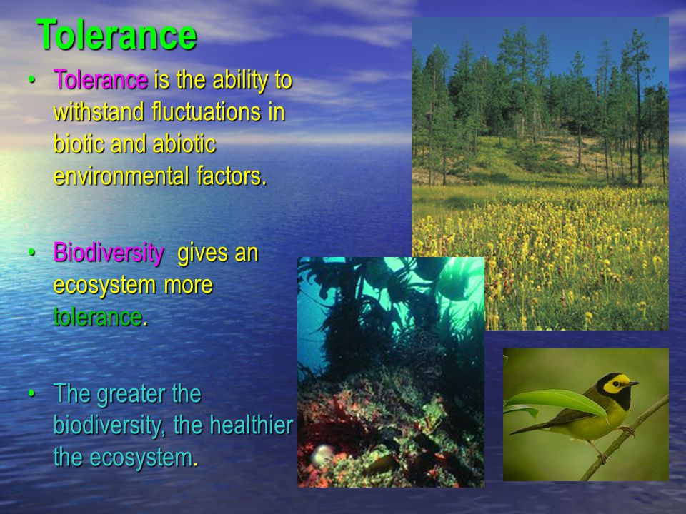 Tolerance Tolerance is the ability to withstand fluctuations in biotic and abiotic environmental factors.