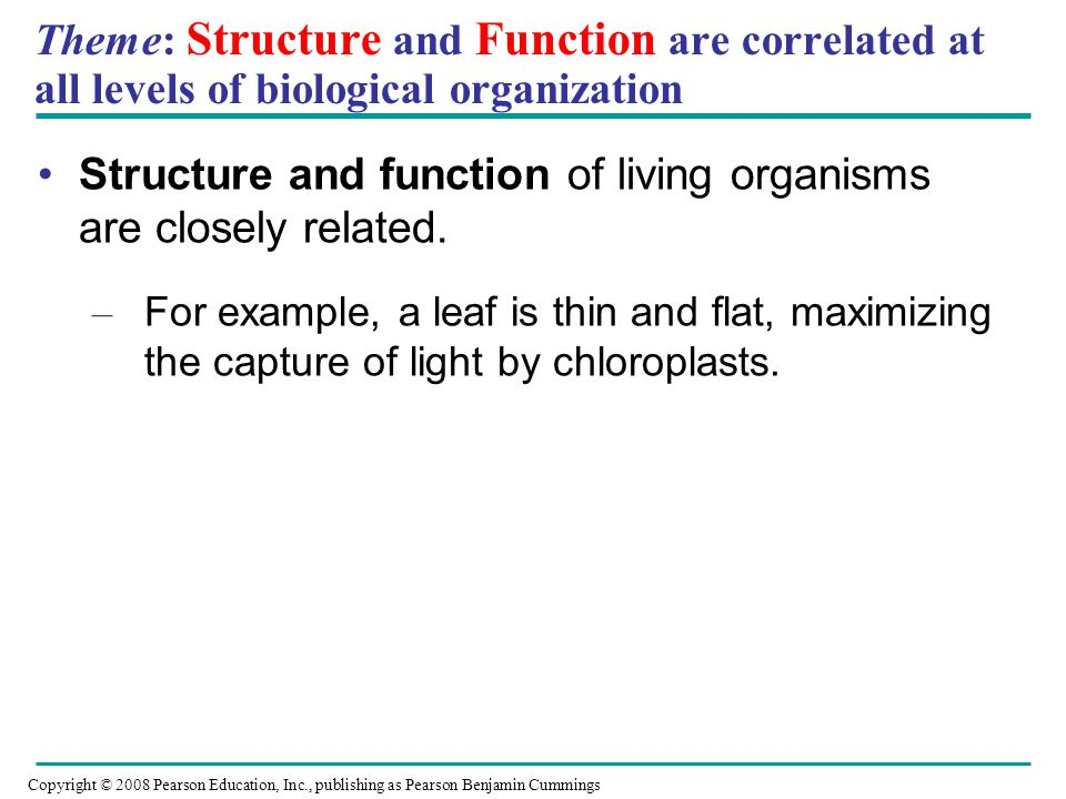 Structure and function of living organisms are closely related.