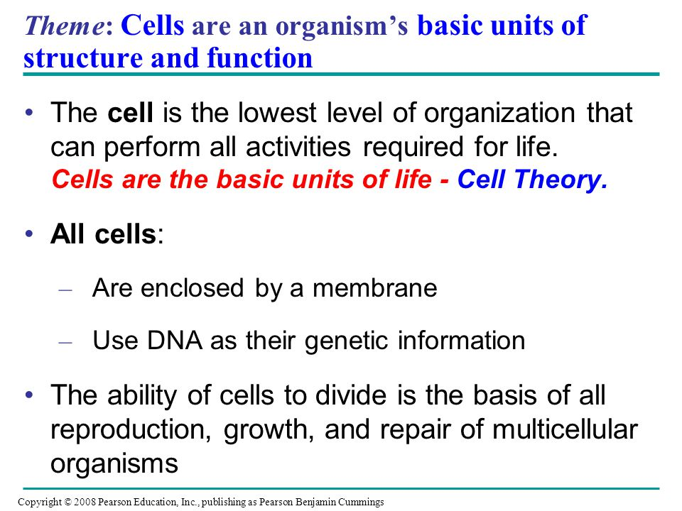 Theme: Cells are an organism's basic units of structure and function