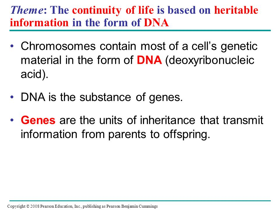 DNA is the substance of genes.