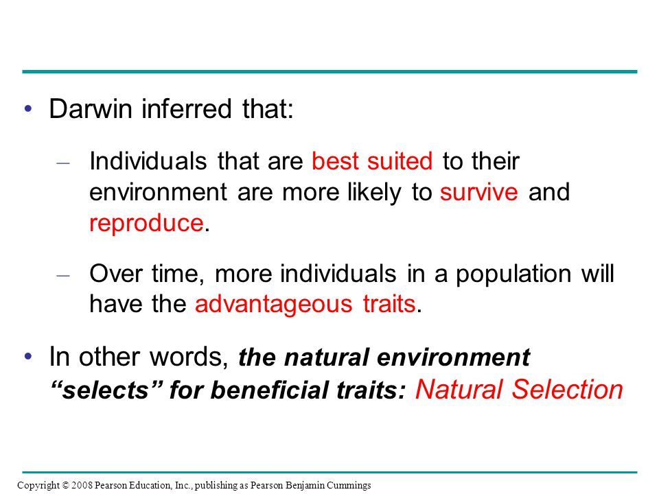 Darwin inferred that: Individuals that are best suited to their environment are more likely to survive and reproduce.