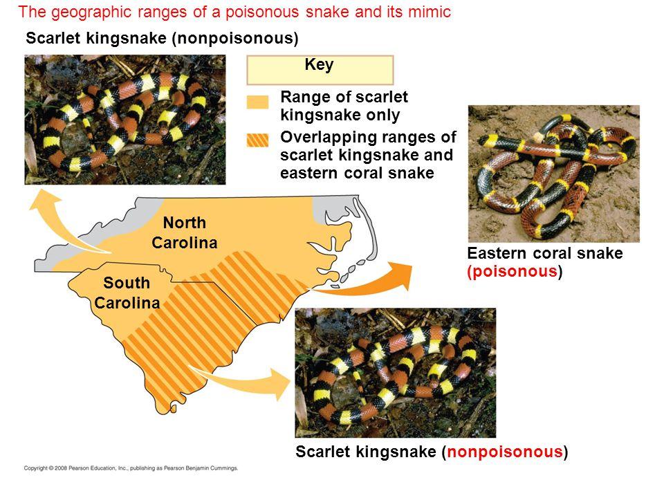 Key North Carolina South Carolina