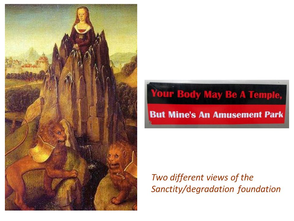 Two different views of the Sanctity/degradation foundation
