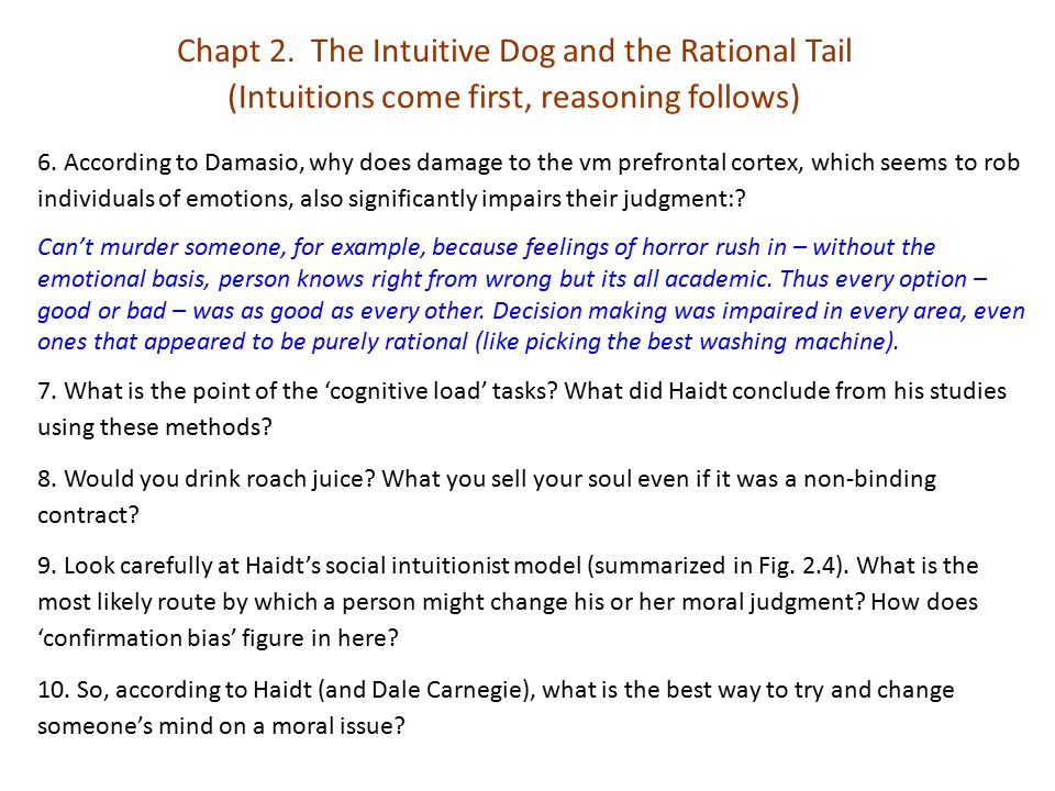 Chapt 2. The Intuitive Dog and the Rational Tail