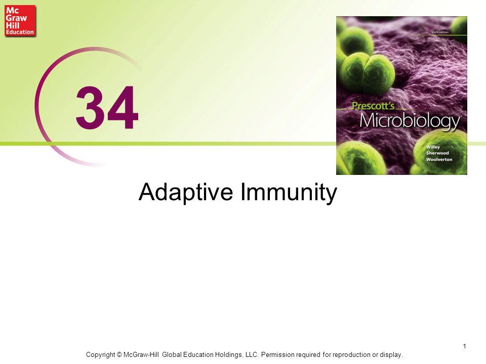 34 Adaptive Immunity Natura