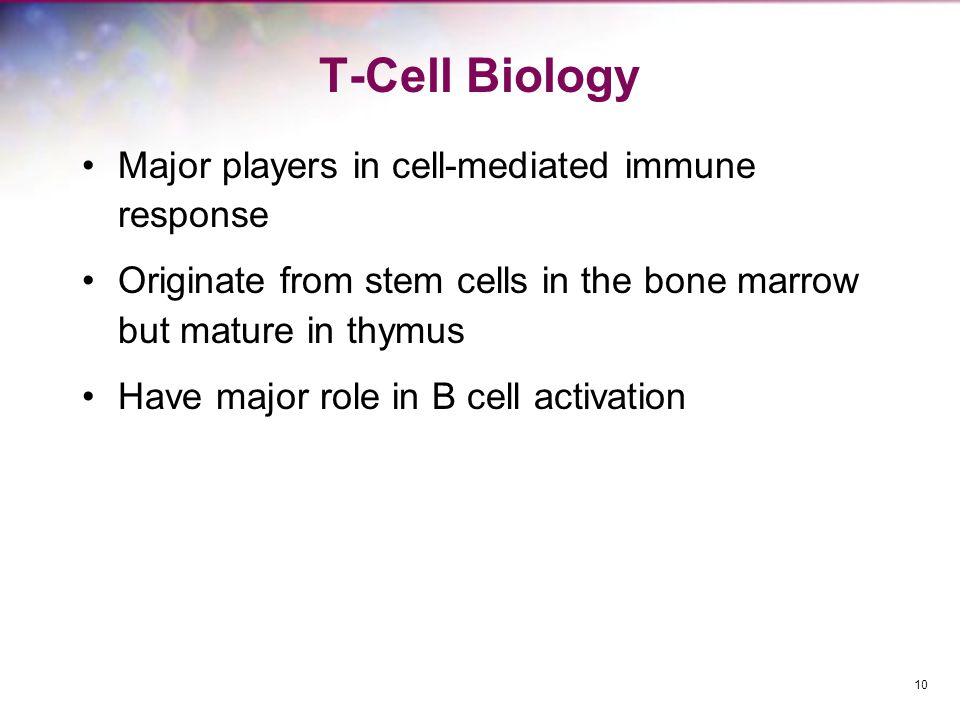 T-Cell Biology Major players in cell-mediated immune response