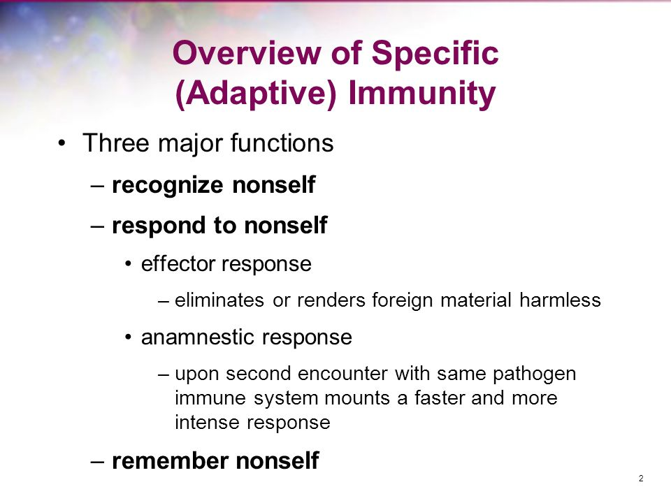 Overview of Specific (Adaptive) Immunity