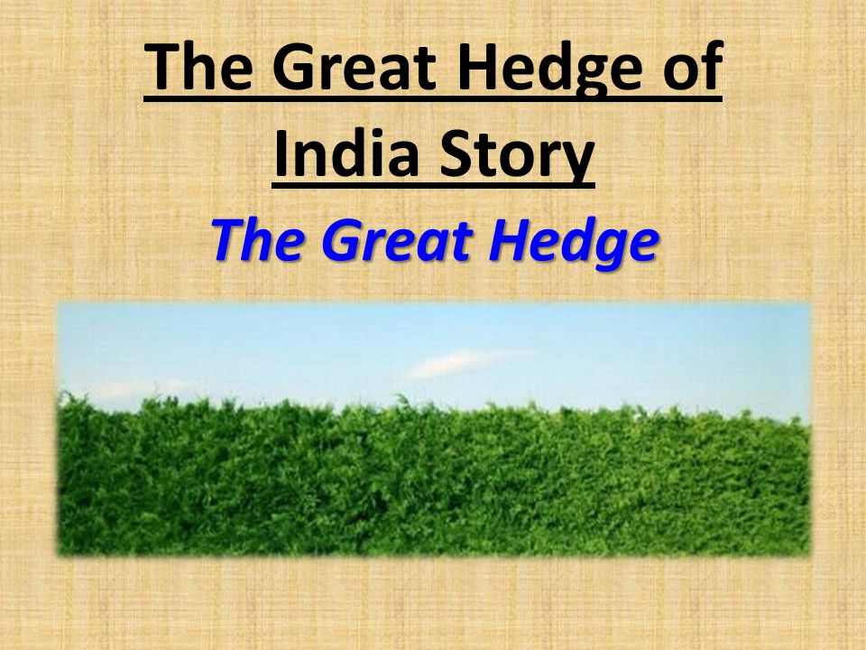 The Great Hedge of India Story