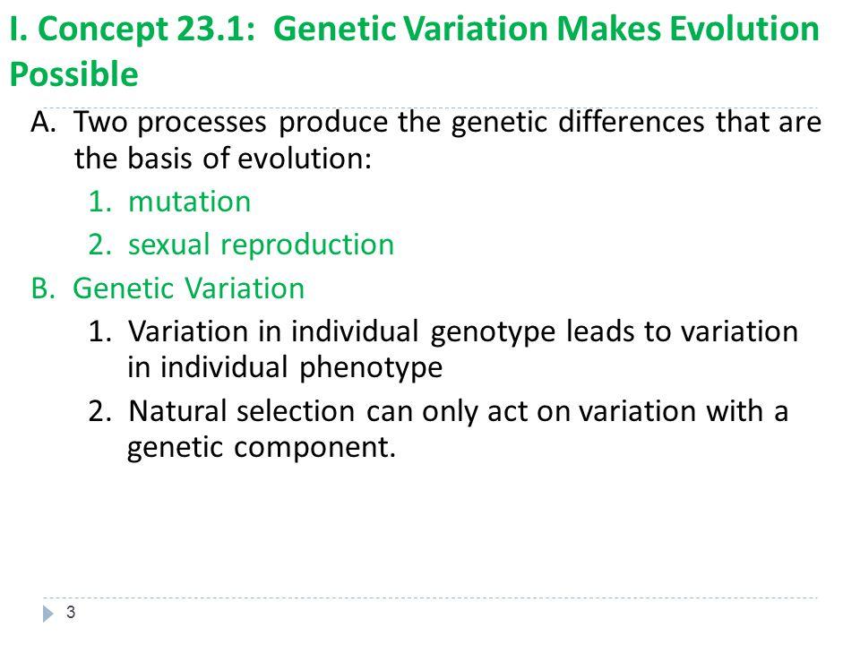 I. Concept 23.1: Genetic Variation Makes Evolution Possible