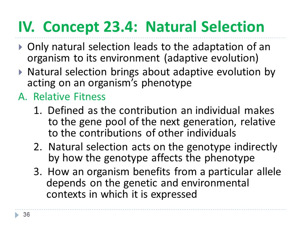 IV. Concept 23.4: Natural Selection