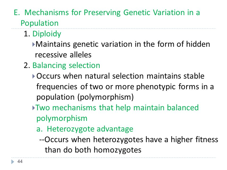 E. Mechanisms for Preserving Genetic Variation in a Population