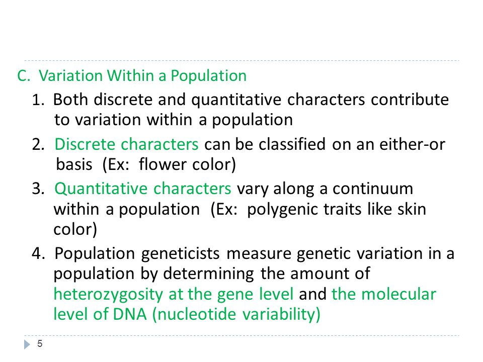 C. Variation Within a Population