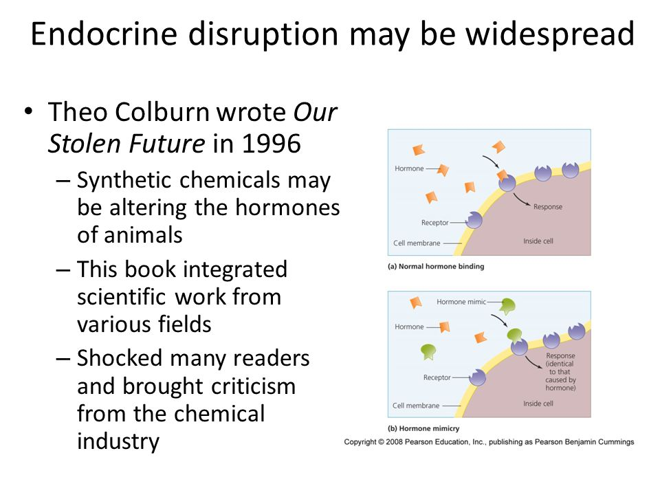 Endocrine disruption may be widespread