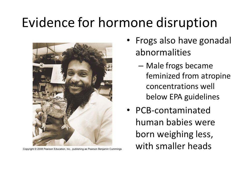 Evidence for hormone disruption