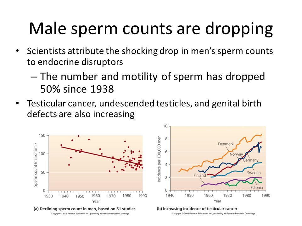 Male sperm counts are dropping