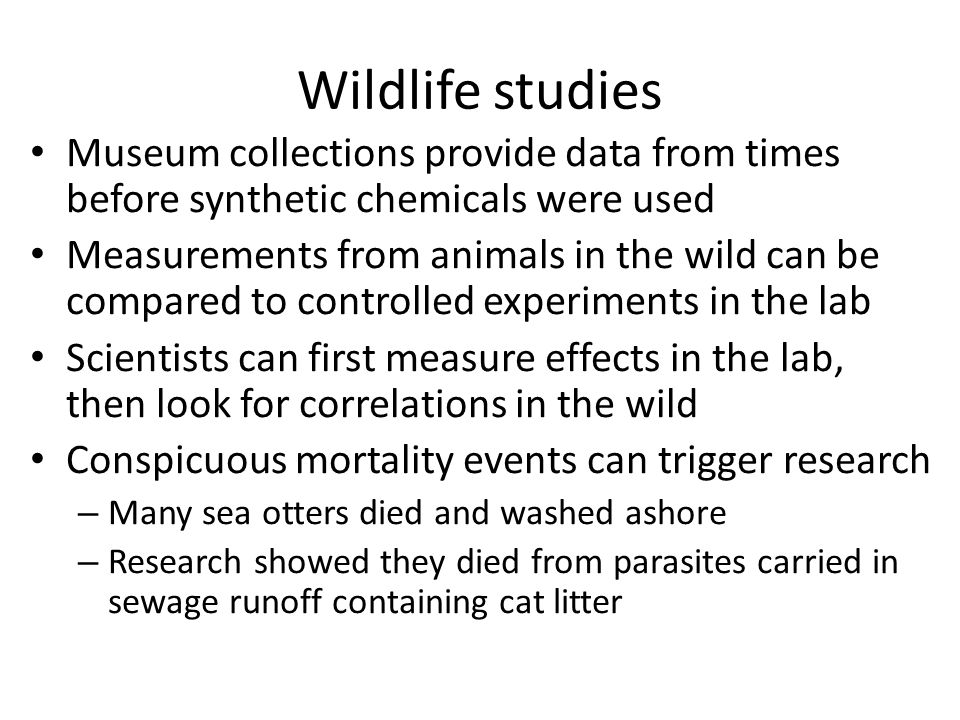 Wildlife studies Museum collections provide data from times before synthetic chemicals were used.