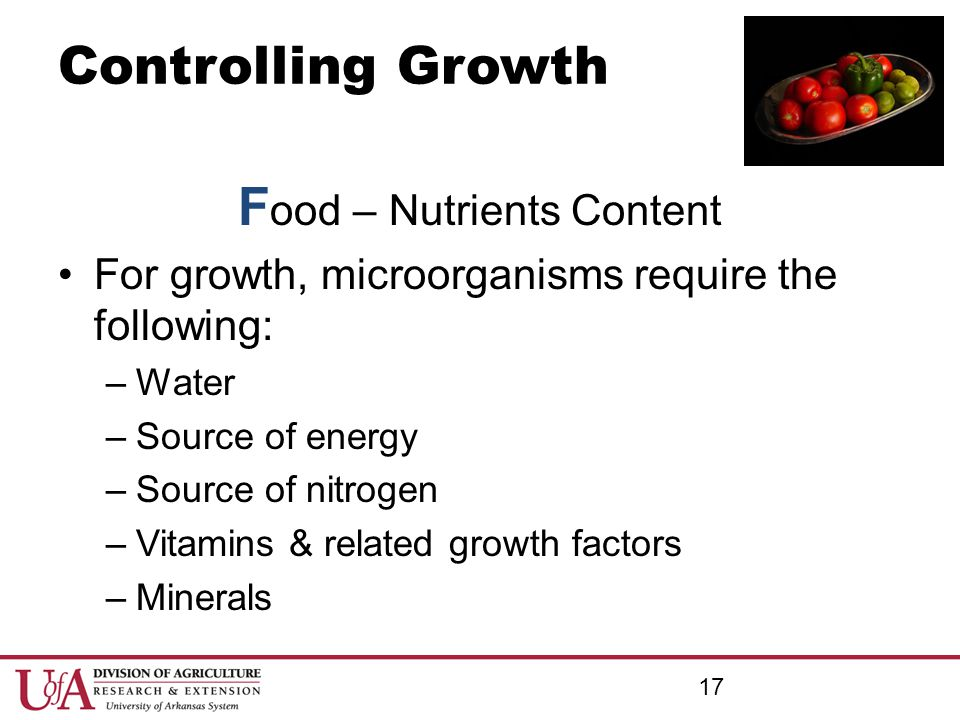 Food – Nutrients Content